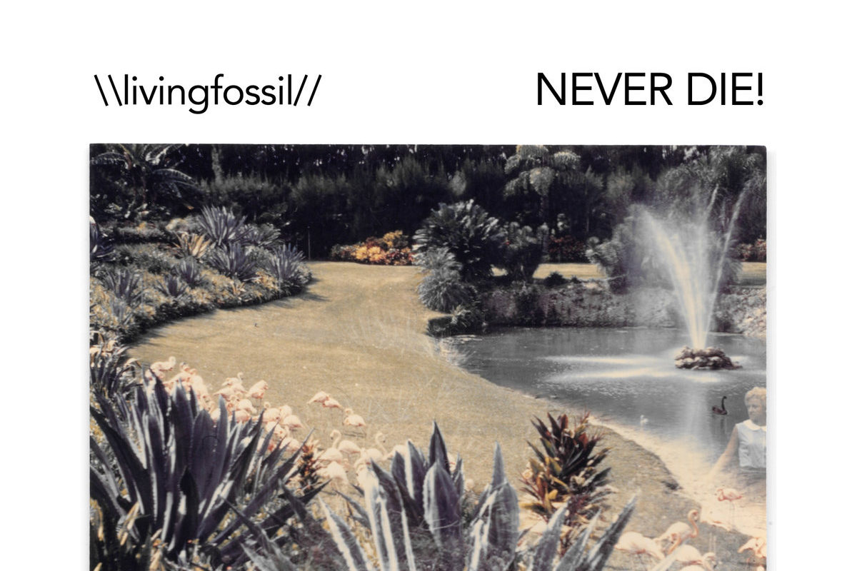 New Music Faster : Living Fossil